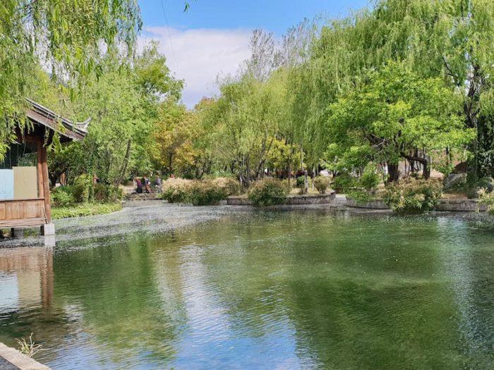束河古墳の池