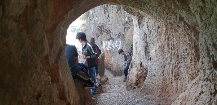 西山公園 急な階段
