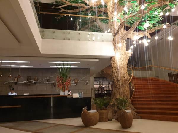 セブ おすすめビジネスホテル Maayo hotel(マーヨホテル)の内観